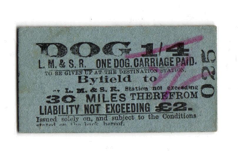 Byfield Dog Ticket