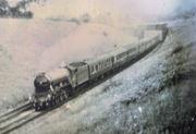Flying Scotsman on a railtour passing under the SMJ bridge at Woodford - Rex Partridge