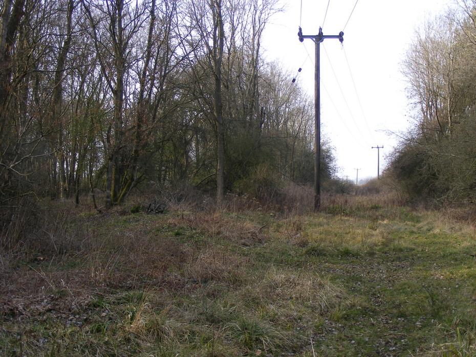 Ravenstone Wood Junction