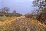 SMJ near Kingthorn Wood