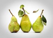 Pears in Trio