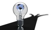 Luminate the World