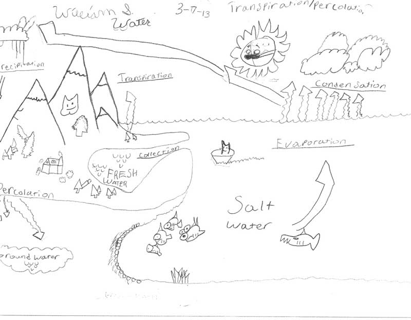 LTR_2013Water_Cycle_0004