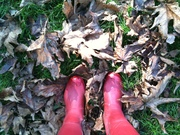 red rainboots and fall leaves