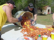 James and Johnny Emptying Crawfish out of cooker