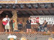 Forest Fest. Elkins