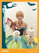 Happy Halloween from Anna, Elsa, Olaf and Sven