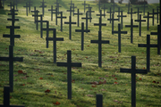 Neuville St Vaast German Cemetery ..the crosses march on.. row by row by row..