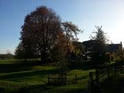Swanbourne Lake 7.51 mile circular 16th November 2013 - Mick Thatcher