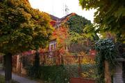 Za tajemstvím starých domů
