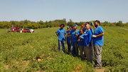 Hunger Task Force Community Crew