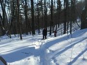 Winter Potluck/Snow Day