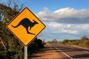 Recruiters in Australia & NZ ... Including Job Vacancies
