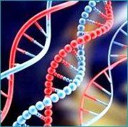 Biotech and Pharma recruiters