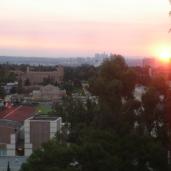 UCLA09 - Sec. 1D