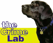Accelerant Detection Canine / Investigations
