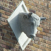Bull's Head: Community Planning