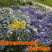 Ravenwood Garden