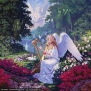 Le chant des Anges