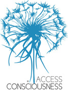 """Access Consciousness """"The Bars"""""""
