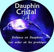 Association Dauphin Cristal: sans vous nous ne pouvons pas exister