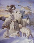 L'animal,le Totem et l'Astrologie