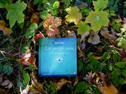 La Petite Voix d' Eileen Caddy - Pensées Quotidiennes et Méditation