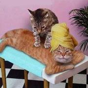 Échange de massage Aix en Provence