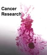 Investigacion en Cancer