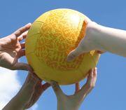 Diensthoofden sport/sportfunctionarissen