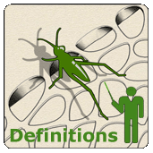Definitions Exchange