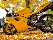 Yellow Bike and Leaves