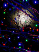 Heavenly Light - Lunar and Terrestrial!