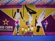 COPA ESTRELLAS 2008