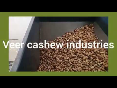 Cashew Processing Machine - Veer Cashew Industries