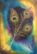 The Eye-Peacock Feather Study #2