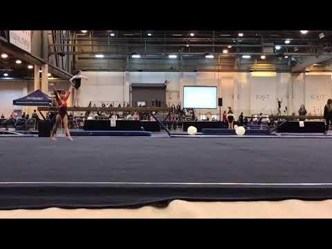 HOUSTON NATIONAL INVITATIONAL 2019 LEVEL3 FLOOR EXERCISE ROBERTA