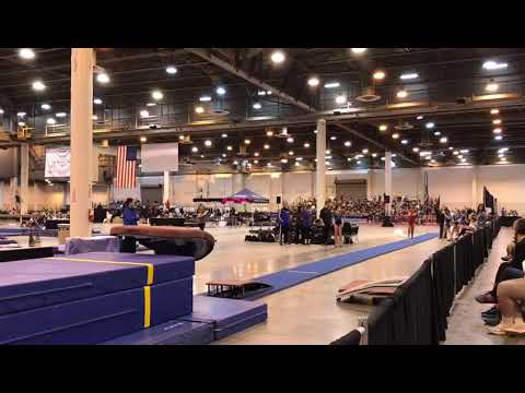 HOUSTON NATIONAL INVITATIONAL 2019 LEVEL6 VAULT CARO