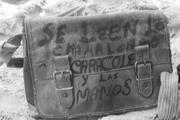Caracoles y Chamalengos