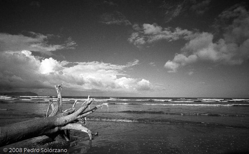 Playa Aguasal 2