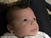 Bebé Gerber 2