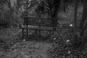 Día 21 - Un retroceso - Zacarias Santorini