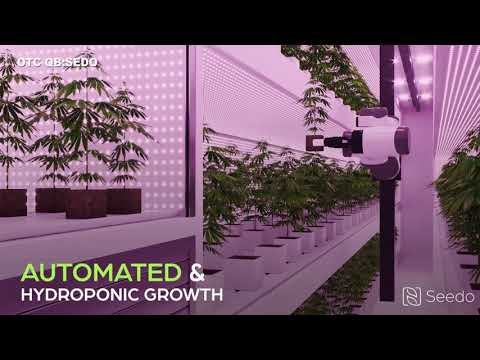 Seedo Automated Farm