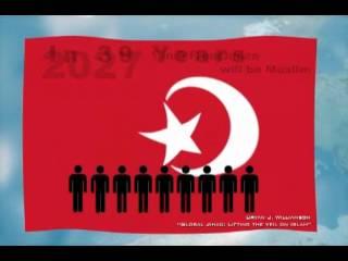 Muslim Demographics
