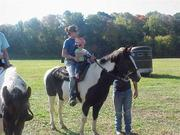 Buck,MooMoo,&Me