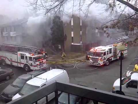 Springfield, VA on Fire