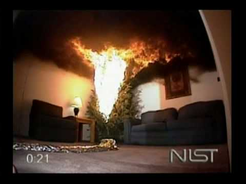 EXCLUSIVE Christmas Tree Safety Tips from NIST (PSA)