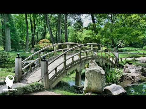 Free Meditation Music 3 Hours Long