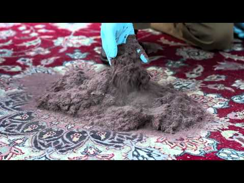 Green Choice Rug Cleaning Leading Name in Oriental, Persian and Area Rug Cleaning. Free Pickup/Delivery