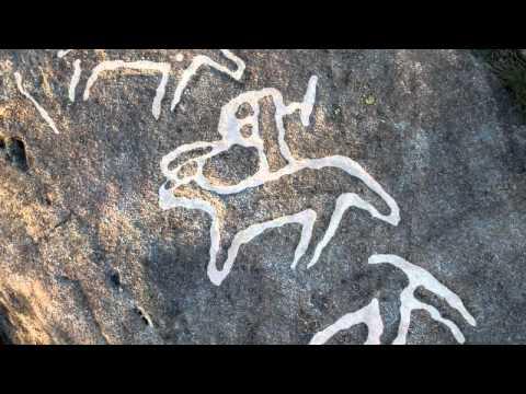 Arte rupestre de Pontevedra